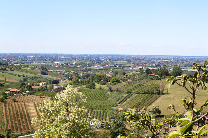 Panorama da Longiano
