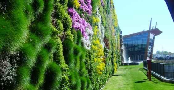 rozzano giardino verticale